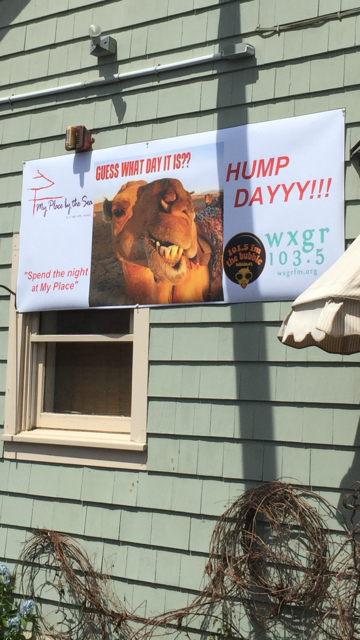 hump day sign